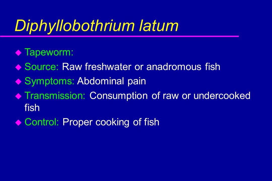 Diphyllobothrium latum u Tapeworm: u Source: Raw freshwater or anadromous fish u Symptoms: Abdominal pain u Transmission: Consumption of raw or undercooked fish u Control: Proper cooking of fish