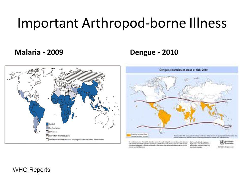 Important Arthropod-borne Illness Malaria - 2009 Dengue - 2010 WHO Reports