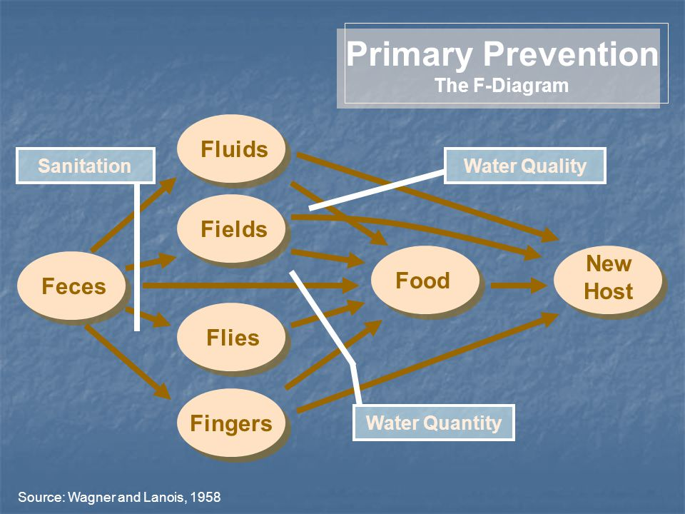 FieldsFluidsFingersFliesFecesFood New Host Primary Prevention The F-Diagram Sanitation Source: Wagner and Lanois, 1958 Water Quality Water Quantity