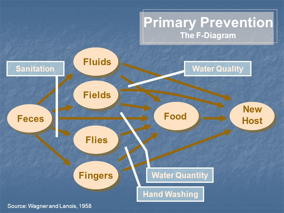 FieldsFluidsFingersFliesFecesFood New Host Primary Prevention The F-Diagram Hand Washing Sanitation Source: Wagner and Lanois, 1958 Water Quality Water Quantity