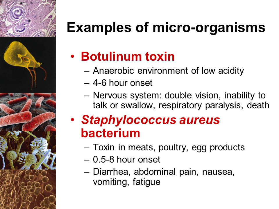 Examples of micro-organisms Botulinum toxin –Anaerobic environment of low acidity –4-6 hour onset –Nervous system: double vision, inability to talk or swallow, respiratory paralysis, death Staphylococcus aureus bacterium –Toxin in meats, poultry, egg products –0.5-8 hour onset –Diarrhea, abdominal pain, nausea, vomiting, fatigue