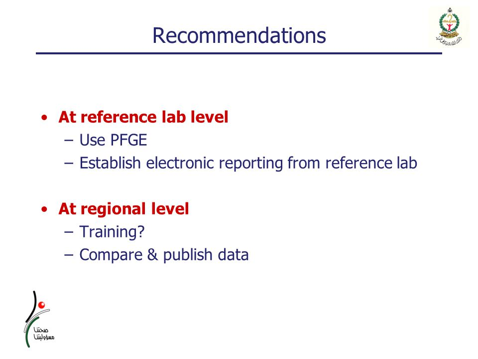 Recommendations At reference lab level –Use PFGE –Establish electronic reporting from reference lab At regional level –Training.