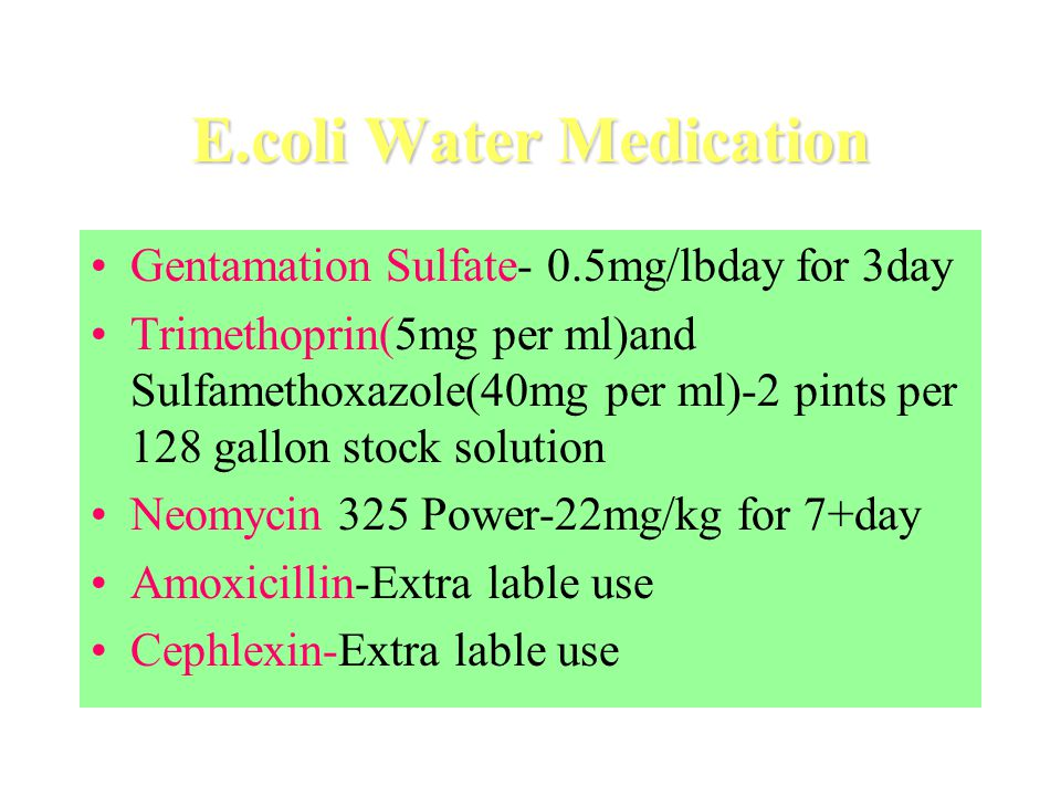 E.coli Water Medication Gentamation Sulfate- 0.5mg/lbday for 3day Trimethoprin(5mg per ml)and Sulfamethoxazole(40mg per ml)-2 pints per 128 gallon stock solution Neomycin 325 Power-22mg/kg for 7+day Amoxicillin-Extra lable use Cephlexin-Extra lable use