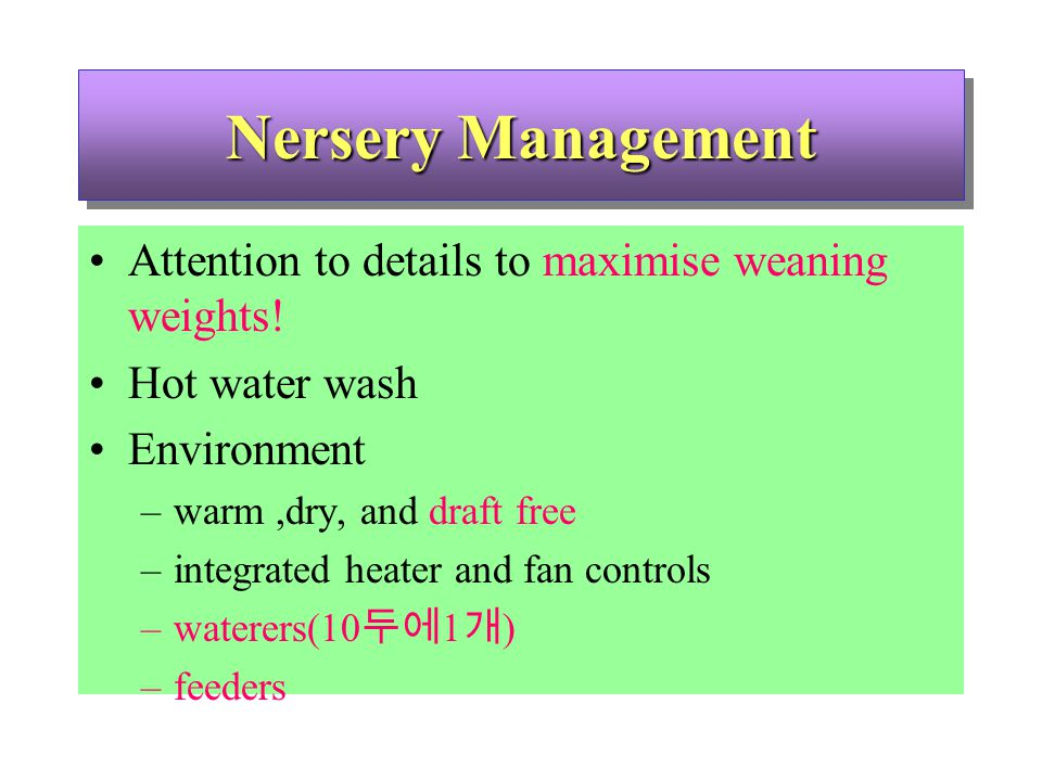 Nersery Management Attention to details to maximise weaning weights.