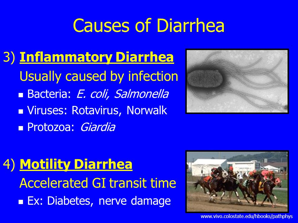 Causes of Diarrhea 3) Inflammatory Diarrhea Usually caused by infection Bacteria: E.