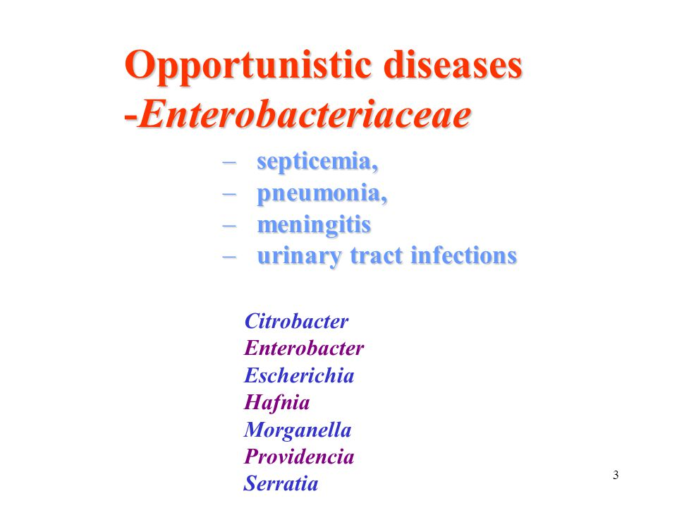 34 Salmonellosis uncomplicated cases (the vast majority) antibiotic therapy not useful Gut lumen