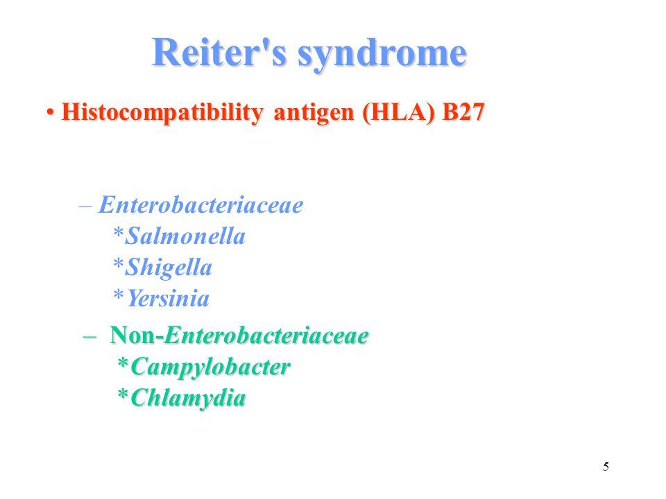 5 Histocompatibility antigen (HLA) B27 Histocompatibility antigen (HLA) B27 – Enterobacteriaceae *Salmonella *Shigella *Yersinia – Non-Enterobacteriac