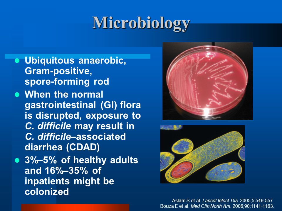 Microbiology Ubiquitous anaerobic, Gram-positive, spore-forming rod When the normal gastrointestinal (GI) flora is disrupted, exposure to C. difficile