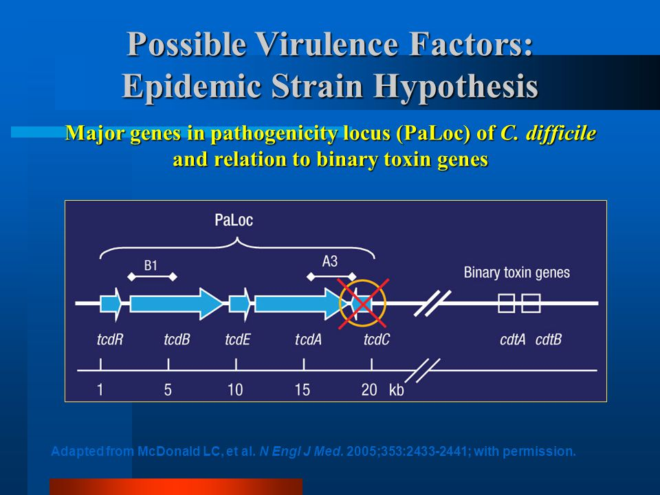 Possible Virulence Factors: Epidemic Strain Hypothesis Major genes in pathogenicity locus (PaLoc) of C. difficile and relation to binary toxin genes A