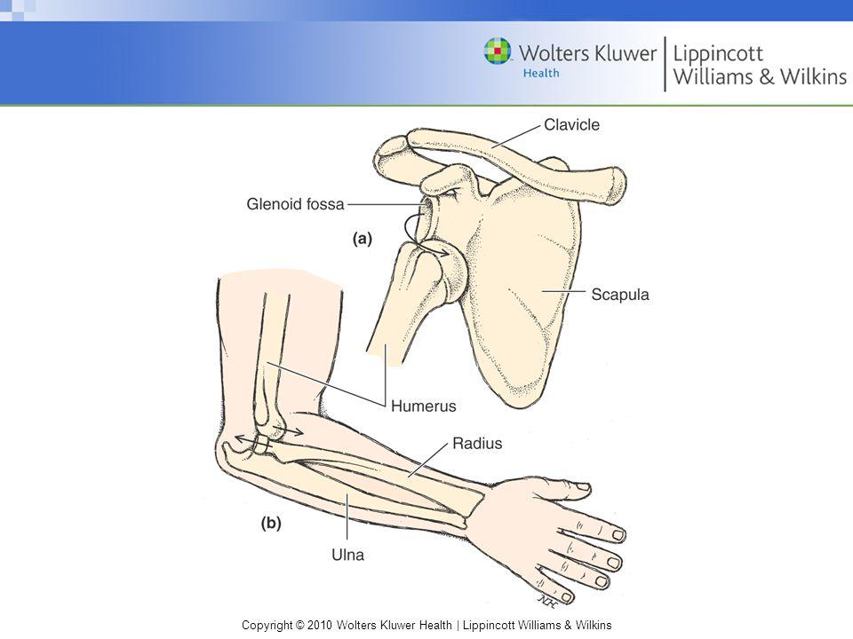 Copyright © 2010 Wolters Kluwer Health | Lippincott Williams & Wilkins