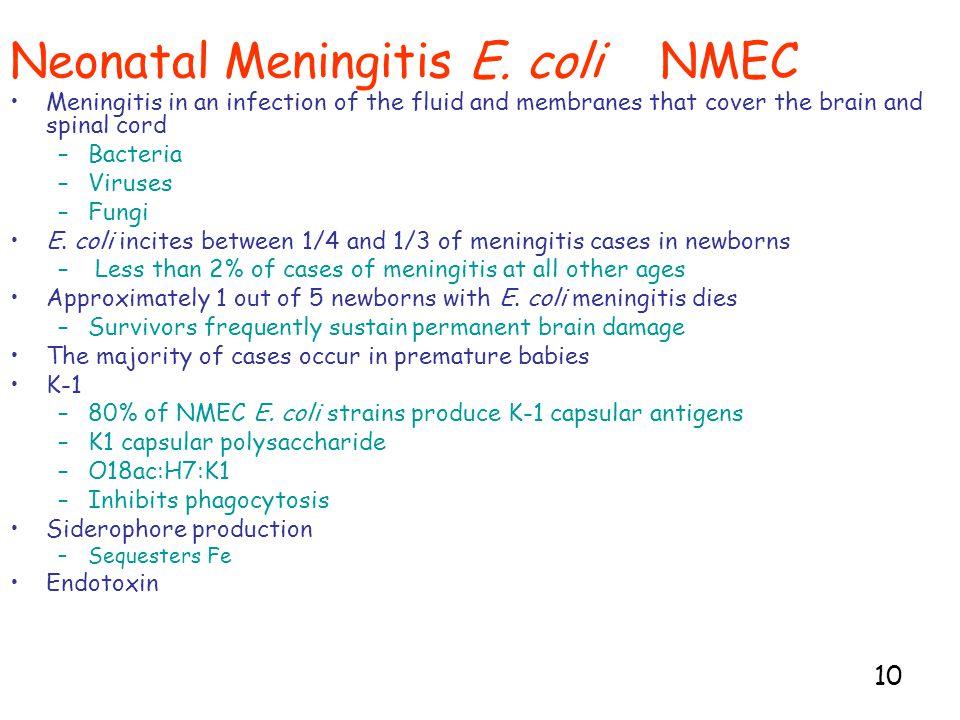 10 Neonatal Meningitis E.
