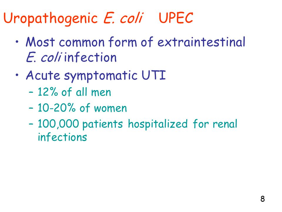 8 Uropathogenic E. coli UPEC Most common form of extraintestinal E.