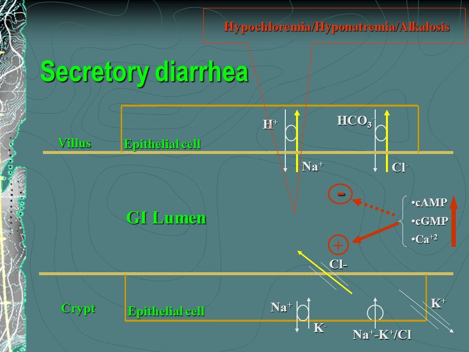 GI Lumen Villus H+H+H+H+ Na + Cl - HCO 3 - Epithelial cell Crypt Na + K-K-K-K- Na + -K + /Cl Cl- K+K+K+K+ Epithelial cell - cAMPcAMP cGMPcGMP Ca +2Ca +2 + Hypochloremia/Hyponatremia/Alkalosis Secretory diarrhea
