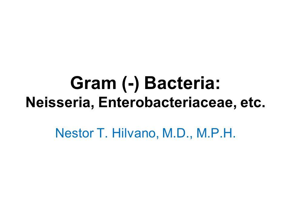 Gram (-) Bacteria: Neisseria, Enterobacteriaceae, etc. Nestor T. Hilvano, M.D., M.P.H.