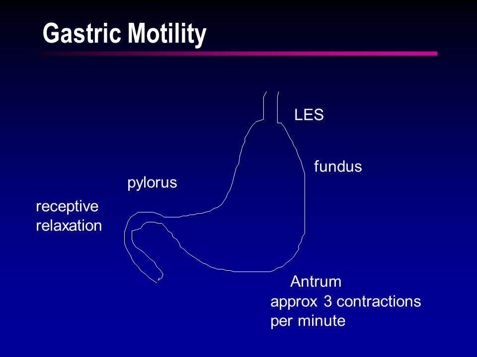 Control of Gastric Emptying GASTRIC EMPTYING PSNS + SNS - Duodenal acid secretin- Duodenal fats CCK - Duodenal hypertonicity -