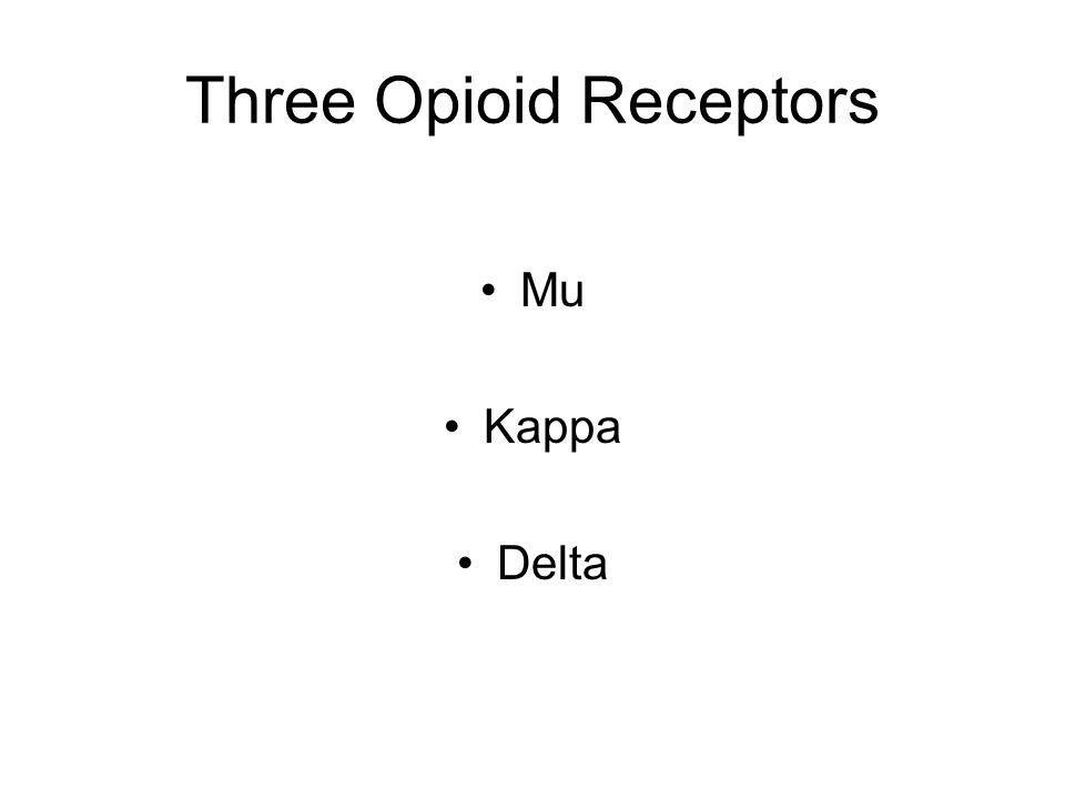 Three Opioid Receptors Mu Kappa Delta