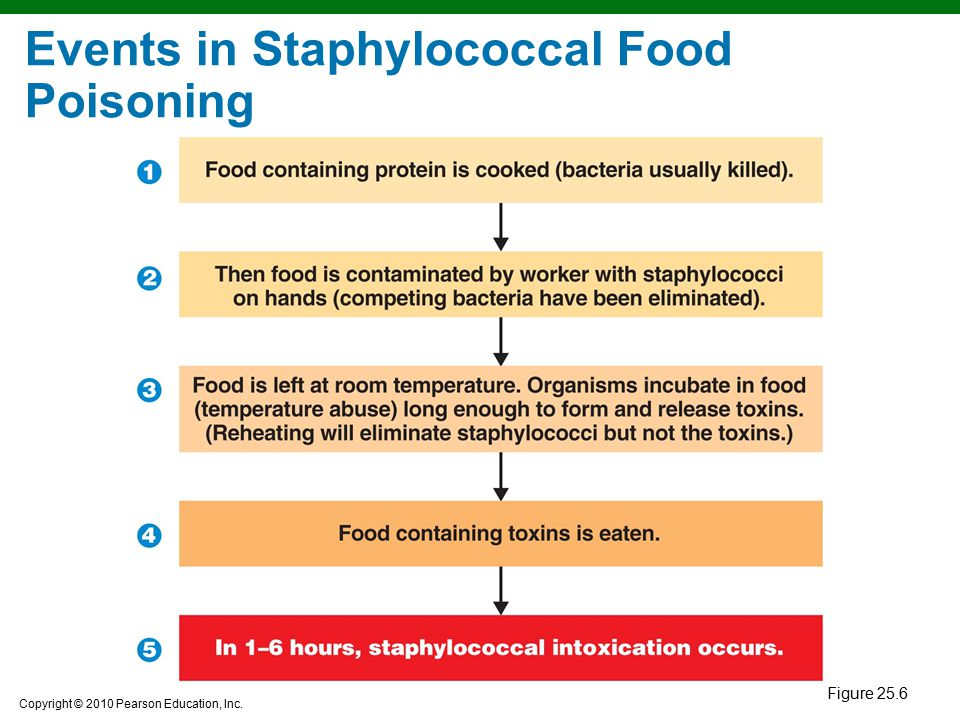 Copyright © 2010 Pearson Education, Inc. Events in Staphylococcal Food Poisoning Figure 25.6