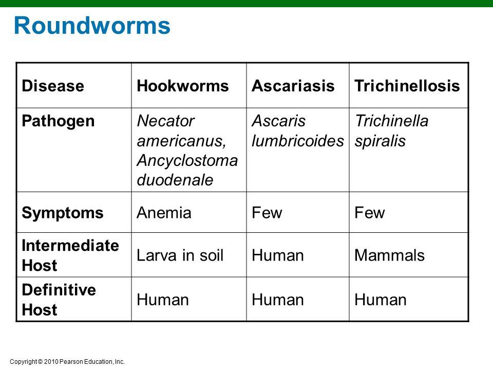 Copyright © 2010 Pearson Education, Inc. Roundworms DiseaseHookwormsAscariasisTrichinellosis PathogenNecator americanus, Ancyclostoma duodenale Ascari