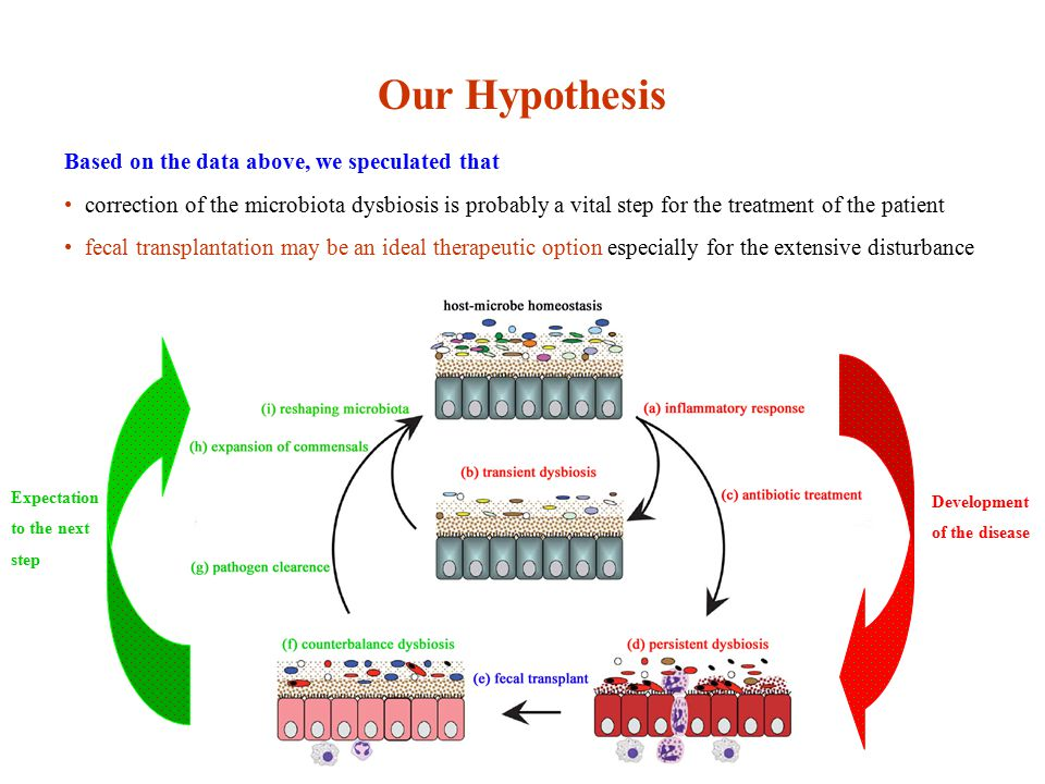 Our Hypothesis Based on the data above, we speculated that correction of the microbiota dysbiosis is probably a vital step for the treatment of the patient fecal transplantation may be an ideal therapeutic option especially for the extensive disturbance Development of the disease Expectation to the next step