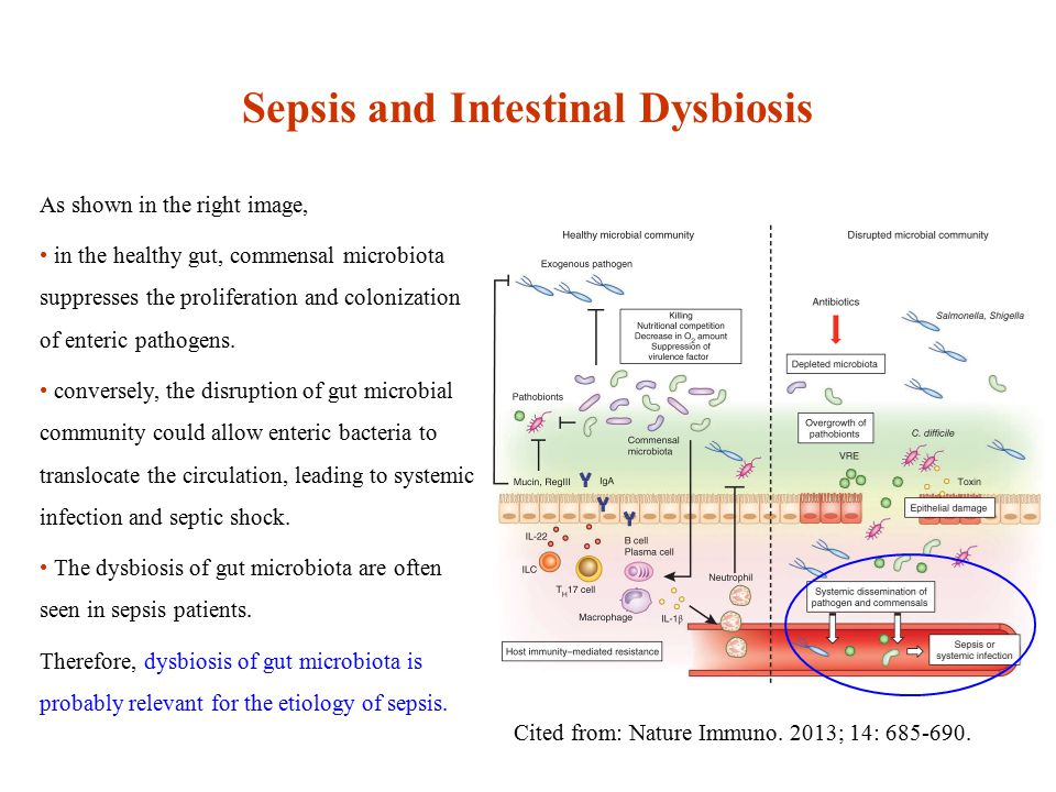 Sepsis and Intestinal Dysbiosis Cited from: Nature Immuno.