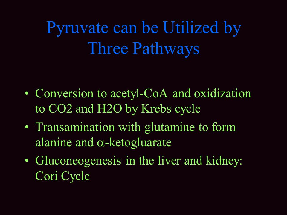 Pyruvate can be Utilized by Three Pathways Conversion to acetyl-CoA and oxidization to CO2 and H2O by Krebs cycle Transamination with glutamine to form alanine and  -ketogluarate Gluconeogenesis in the liver and kidney: Cori Cycle