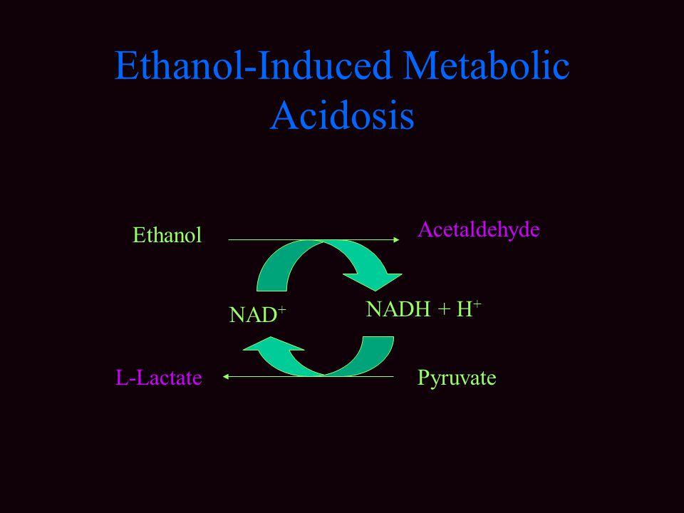 Ethanol-Induced Metabolic Acidosis Ethanol Acetaldehyde L-LactatePyruvate NAD + NADH + H +