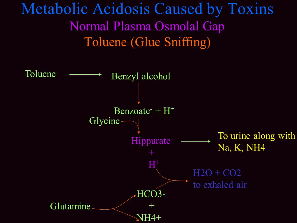 Metabolic Acidosis Caused by Toxins Normal Plasma Osmolal Gap Toluene (Glue Sniffing) Toluene Benzyl alcohol Benzoate - + H + Glycine Hippurate - + H + To urine along with Na, K, NH4 HCO3- + NH4+ Glutamine H2O + CO2 to exhaled air