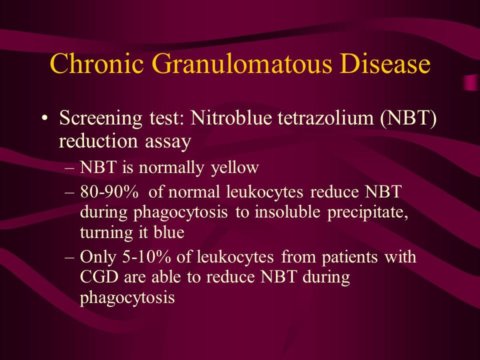 Chronic Granulomatous Disease Screening test: Nitroblue tetrazolium (NBT) reduction assay –NBT is normally yellow –80-90% of normal leukocytes reduce NBT during phagocytosis to insoluble precipitate, turning it blue –Only 5-10% of leukocytes from patients with CGD are able to reduce NBT during phagocytosis
