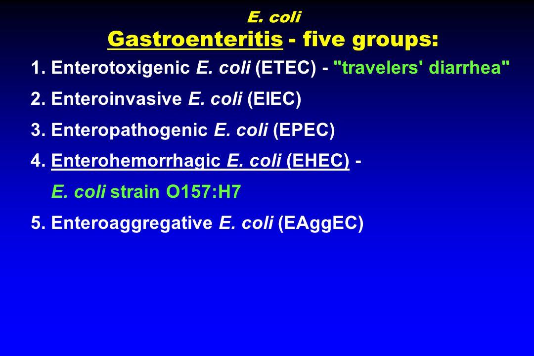 E. coli Gastroenteritis - five groups: 1. Enterotoxigenic E.