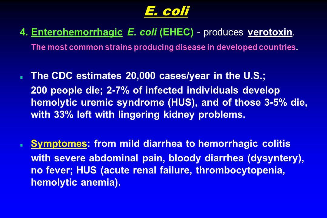 E. coli 4. Enterohemorrhagic E. coli (EHEC) - produces verotoxin.