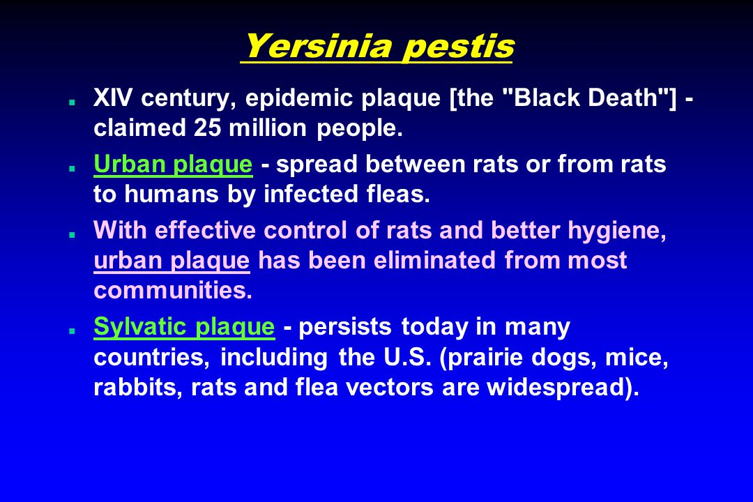 Yersinia pestis n XIV century, epidemic plaque [the Black Death ] - claimed 25 million people.