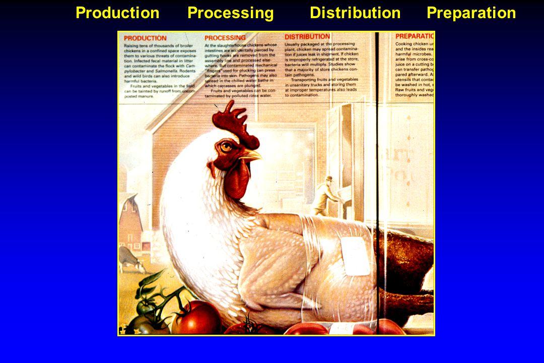 Production Processing Distribution Preparation