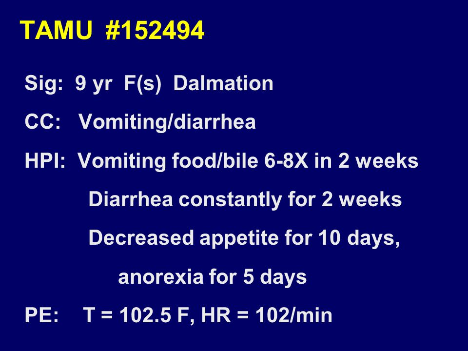 TAMU #152494 Sig: 9 yr F(s) Dalmation CC: Vomiting/diarrhea HPI: Vomiting food/bile 6-8X in 2 weeks Diarrhea constantly for 2 weeks Decreased appetite