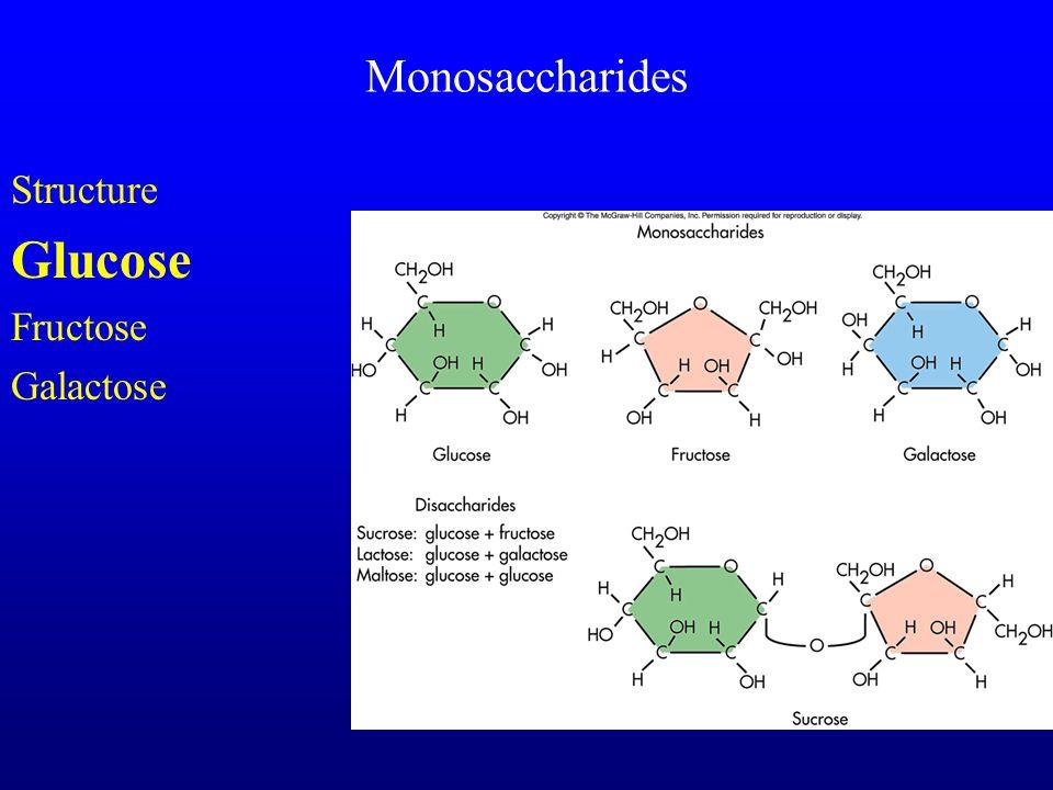 Monosaccharides Structure Glucose Fructose Galactose