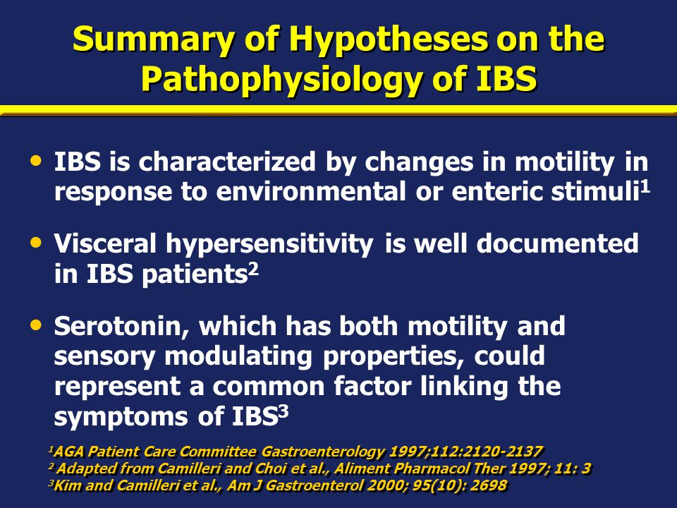 Summary of Hypotheses on the Pathophysiology of IBS IBS is characterized by changes in motility in response to environmental or enteric stimuli 1 Visc