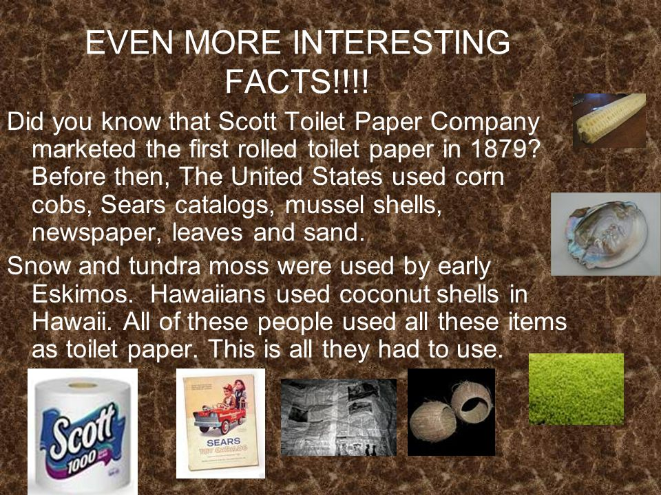 EVEN MORE INTERESTING FACTS!!!.