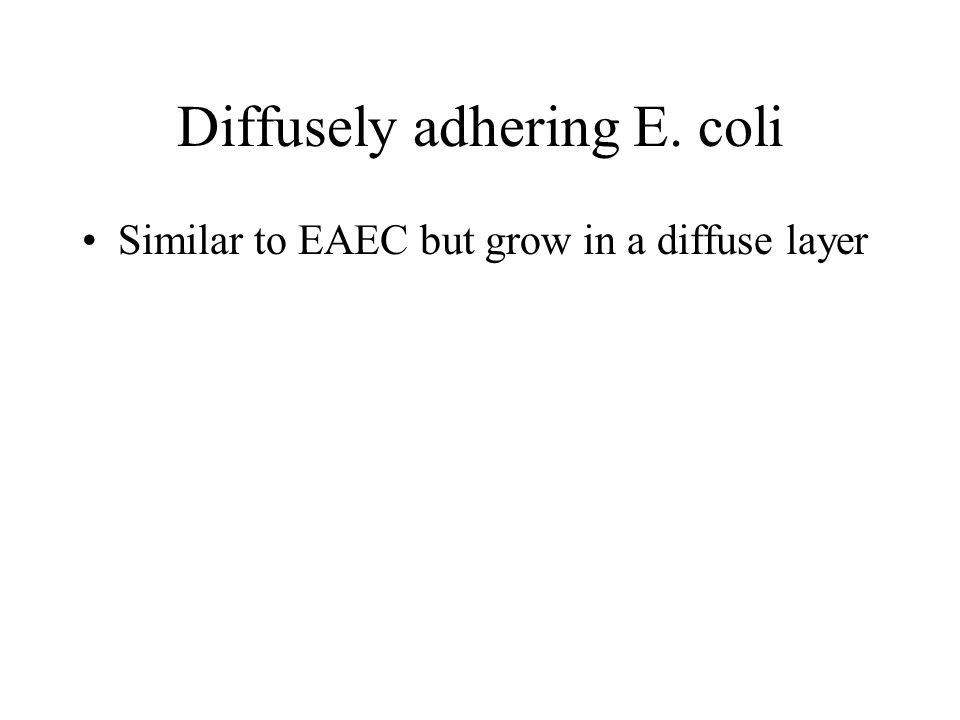 Diffusely adhering E. coli Similar to EAEC but grow in a diffuse layer