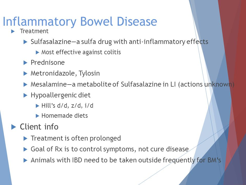 Inflammatory Bowel Disease  Treatment  Sulfasalazine—a sulfa drug with anti-inflammatory effects  Most effective against colitis  Prednisone  Metronidazole, Tylosin  Mesalamine—a metabolite of Sulfasalazine in LI (actions unknown)  Hypoallergenic diet  Hill's d/d, z/d, i/d  Homemade diets  Client info  Treatment is often prolonged  Goal of Rx is to control symptoms, not cure disease  Animals with IBD need to be taken outside frequently for BM's