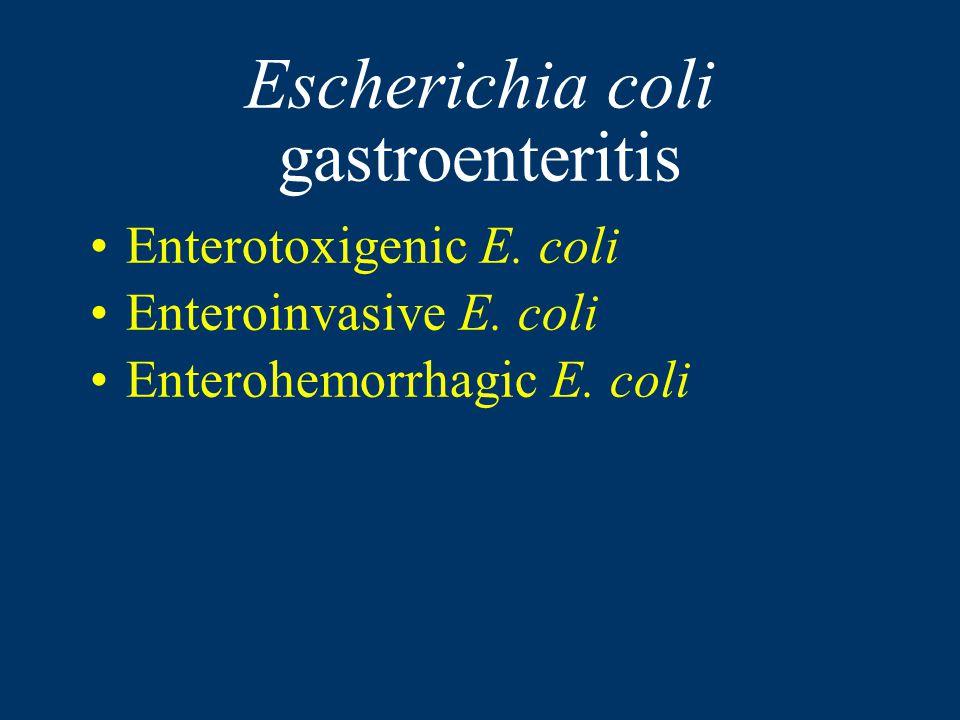 Escherichia coli gastroenteritis Enterotoxigenic E.