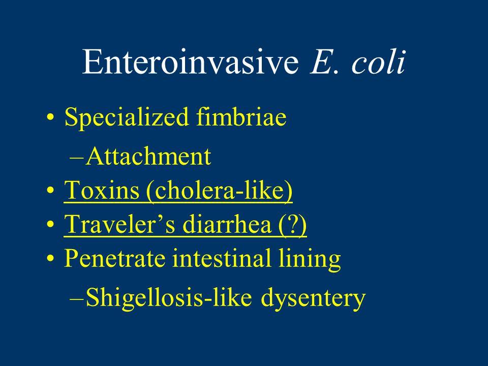 Enteroinvasive E.