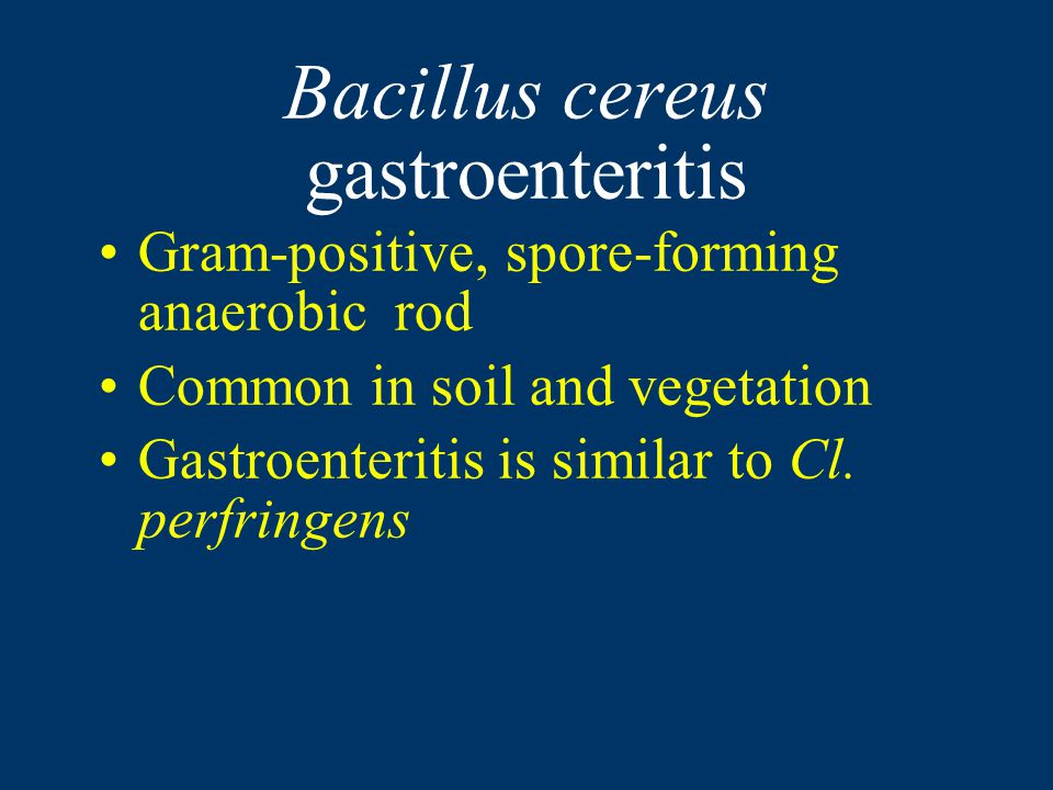 Bacillus cereus gastroenteritis Gram-positive, spore-forming anaerobic rod Common in soil and vegetation Gastroenteritis is similar to Cl.