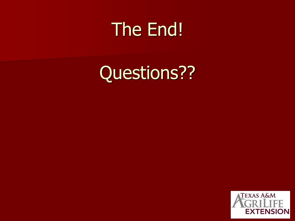 The End! Questions??