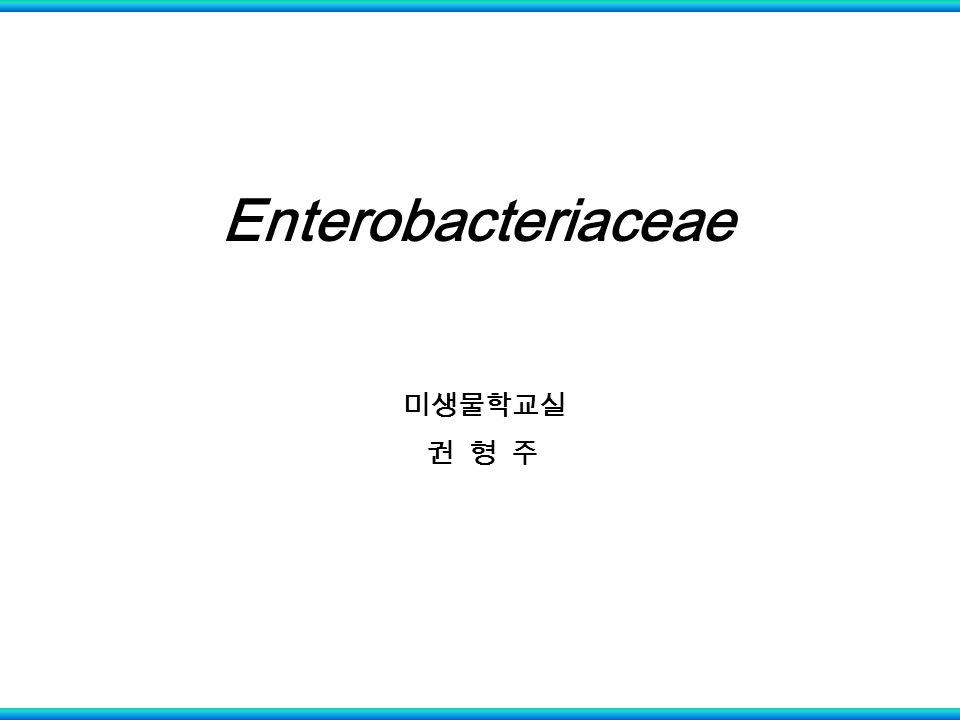 Enterobacteriaceae 미생물학교실 권 형 주