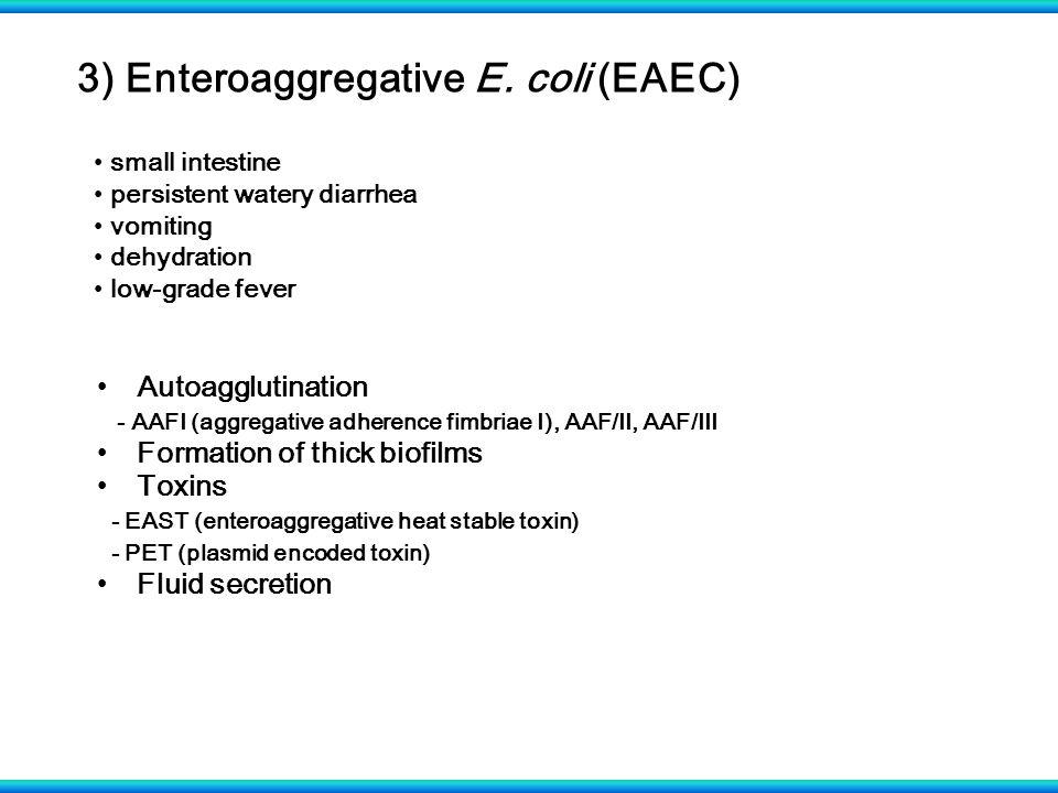 3) Enteroaggregative E. coli (EAEC) small intestine persistent watery diarrhea vomiting dehydration low-grade fever Autoagglutination - AAFI (aggregat