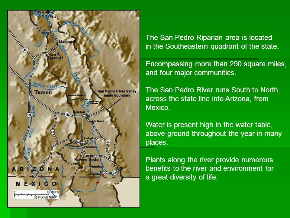 The San Pedro Riparian area is located in the Southeastern quadrant of the state.