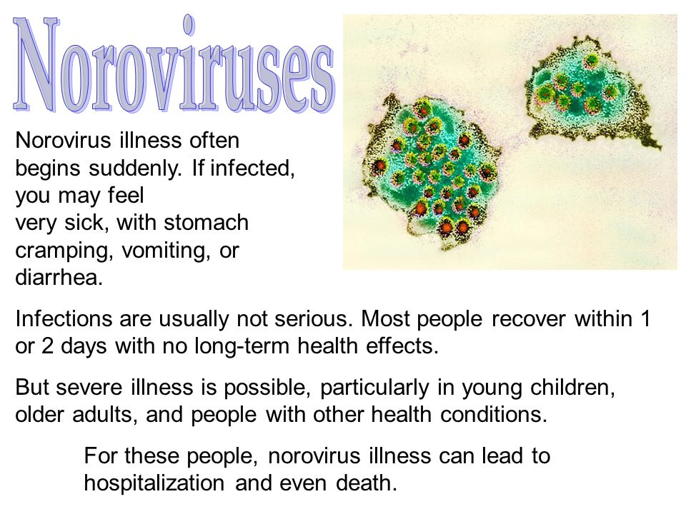 Norovirus illness often begins suddenly. If infected, you may feel very sick, with stomach cramping, vomiting, or diarrhea. Infections are usually not