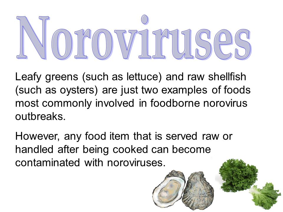 Leafy greens (such as lettuce) and raw shellfish (such as oysters) are just two examples of foods most commonly involved in foodborne norovirus outbreaks.