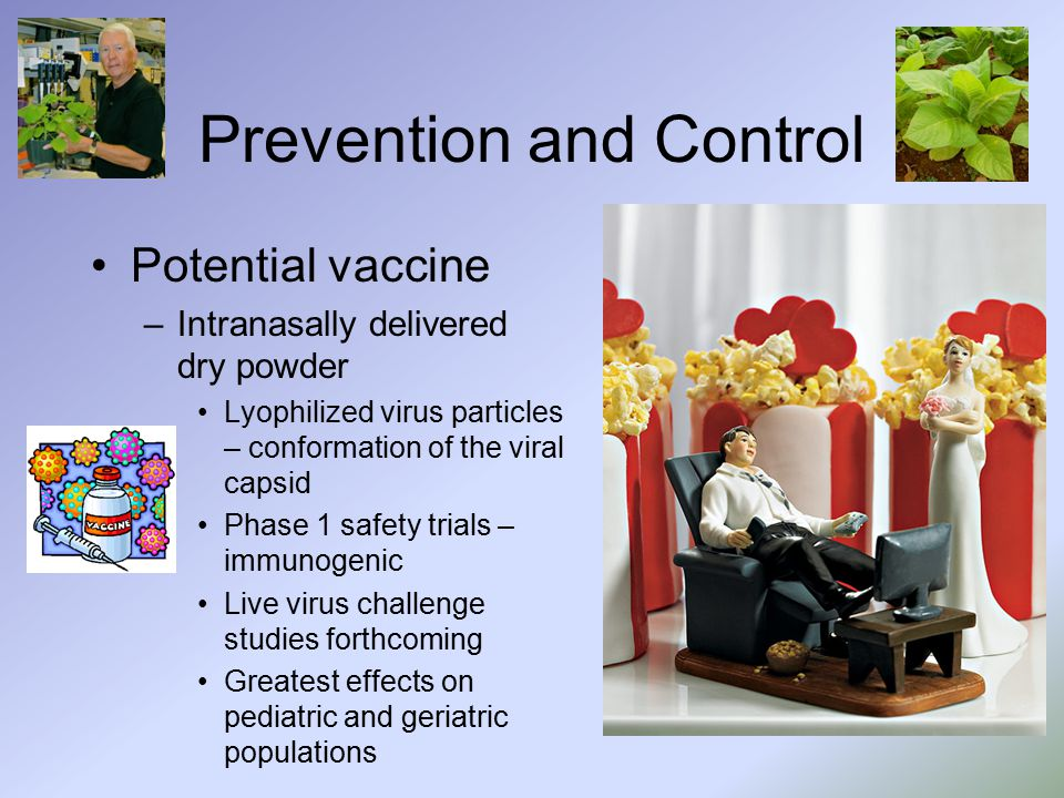 Prevention and Control Potential vaccine –Intranasally delivered dry powder Lyophilized virus particles – conformation of the viral capsid Phase 1 safety trials – immunogenic Live virus challenge studies forthcoming Greatest effects on pediatric and geriatric populations