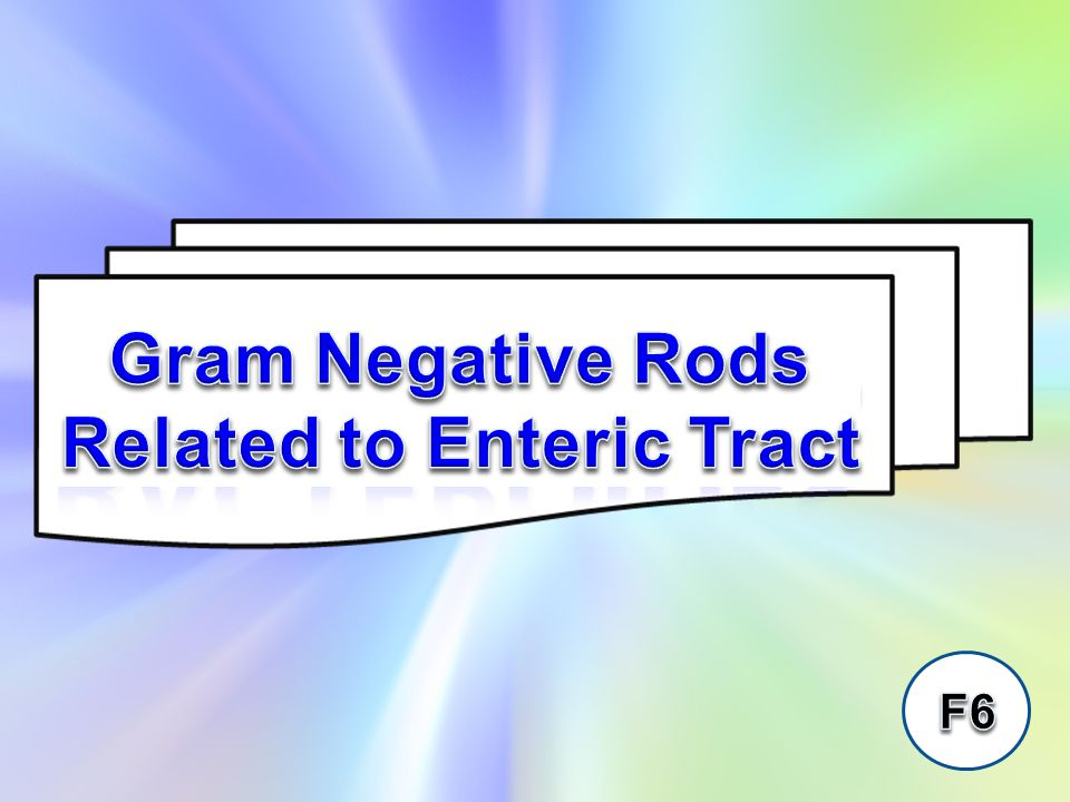 The Enterobacteriaceae are a large heterogeneous group of gram negative rods whose natural habitat is the intestinal tract of humans and animals.