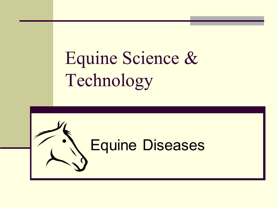 Equine Science & Technology Equine Diseases